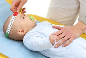 Рост головы ребенка по месяцам таблица